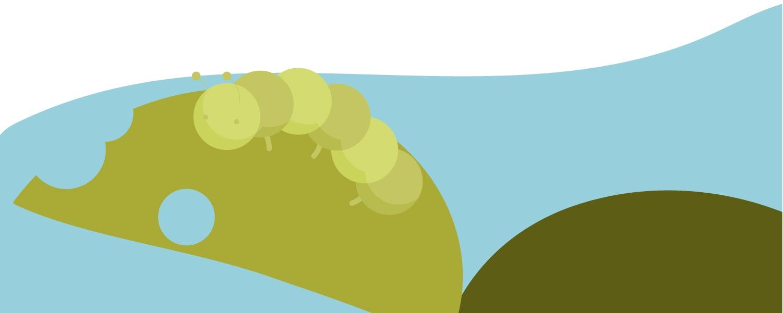 A pesky caterpillar eating a leaf