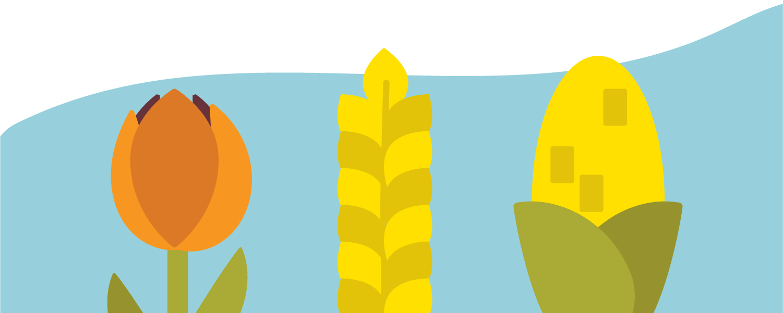 a diverse array of crops