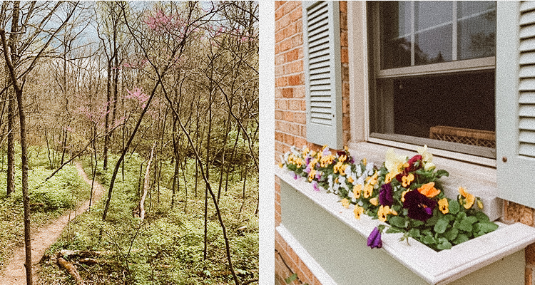 A photo of a metro park walking trail and an outdoor window flower box