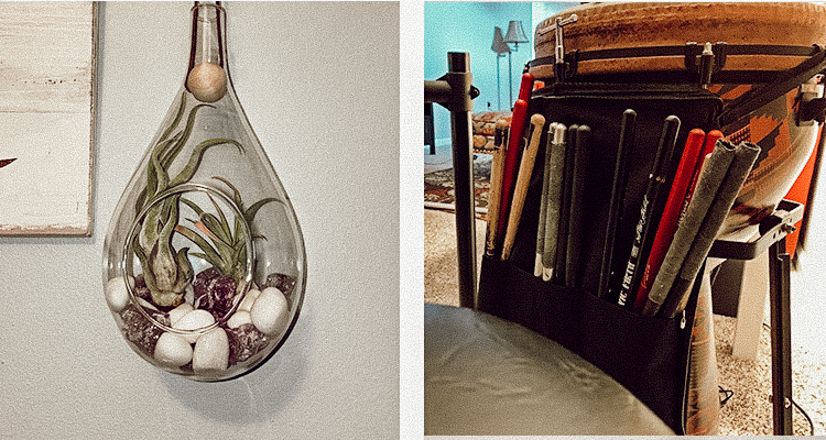 A photograph of an air plant beside a photograph of a djembe drum with a pack of drum sticks